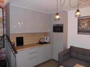 Virtuvė arba virtuvėlė apgyvendinimo įstaigoje Apartament Przy Ratuszu