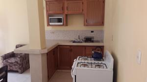 A kitchen or kitchenette at Cool Runnings Apartments