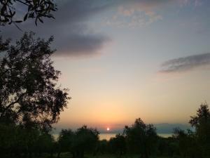 Răsăritul sau apusul soarelui văzute de la sau din apropierea acestei case de vacanță