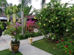 Jardin de l'établissement Villa Gusmania