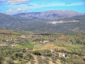 Blick auf Casa Milagrosa aus der Vogelperspektive