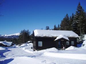 Hogstul Hytter - Gamlestua om vinteren
