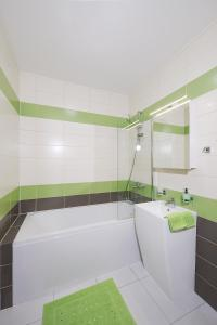 A bathroom at Letna luxury apartment