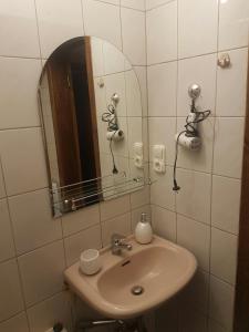 Vonios kambarys apgyvendinimo įstaigoje Agnės apartamentas