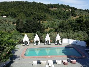 Θέα της πισίνας από το Villa Albanis ή από εκεί κοντά