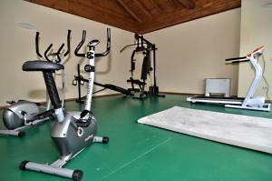 Фитнес център и/или фитнес съоражения в Вила Велена