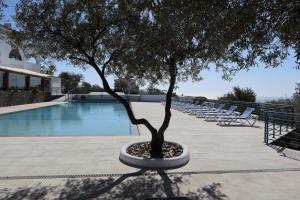 The swimming pool at or near Carpe Diem Cadaqués