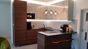 Kuchyňa alebo kuchynka v ubytovaní Apartmanica Triangel 103