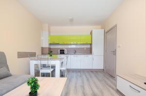 A kitchen or kitchenette at Apollon Apartments