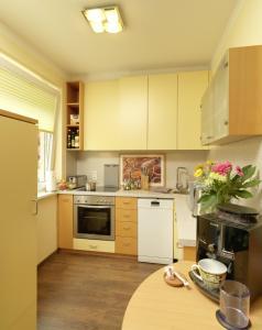 A kitchen or kitchenette at Appartement Anich