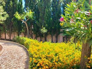 A garden outside Suite Dreams Portimão