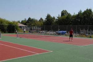 Tennis- en/of squashfaciliteiten bij Chalet Waterpret of in de buurt