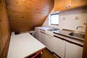 Kuhinja oz. manjša kuhinja v nastanitvi Apartment Odar