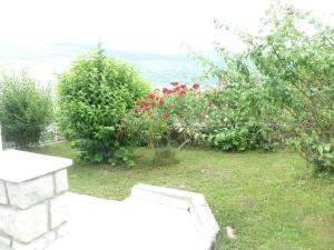 Jardin de l'établissement La maison de Gatusse