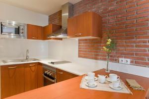 Kuchyň nebo kuchyňský kout v ubytování Serennia Cest Apartamentos Arc de Triomf