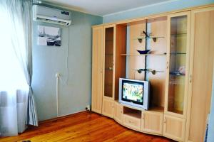 Телевизор и/или развлекательный центр в Apartment on Prosveshcheniya 106