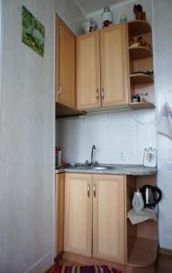 Кухня или мини-кухня в Skromnoe obayanie SSSR