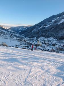 גלישת סקי בדירה או בסביבה