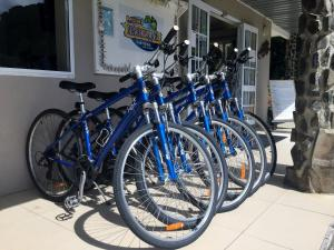 Biking at or in the surroundings of Muri Beachcomber
