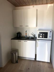 A kitchen or kitchenette at Frydendal