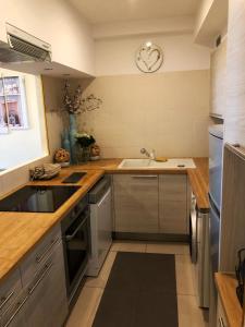 A kitchen or kitchenette at Appartements Centre Ville Massena avec vue