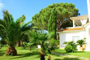 A garden outside Villa Lucija