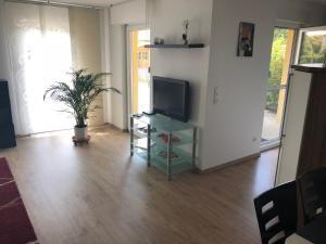 TV/Unterhaltungsangebot in der Unterkunft Ferienwohnung im Weinbergweg