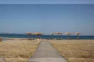 Pláž pri vile alebo v blízkosti