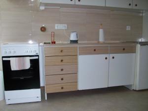Kuhinja oz. manjša kuhinja v nastanitvi apartman Cedra