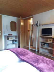טלויזיה ו/או מרכז בידור ב-Gästehaus Linder Ferienwohnungen