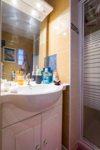 A bathroom at Spacious T1 bis - Area Saint-Michel