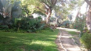 A garden outside Ein Gedi Family Apartment