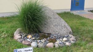 """A garden outside Ferienhaus """"Zur Sprotte"""" in Glowe"""