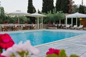 Het zwembad bij of vlak bij Villa Nika