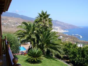 Uitzicht op het zwembad bij Villas Los Pajeros of in de buurt