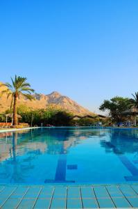 The swimming pool at or near Ein Gedi Family Apartment
