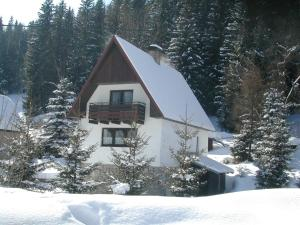 Chalet Helena during the winter
