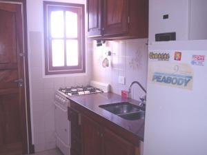 Una cocina o kitchenette en El Ebro