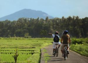Biking at or in the surroundings of FuramaXclusive Resort & Villas, Ubud