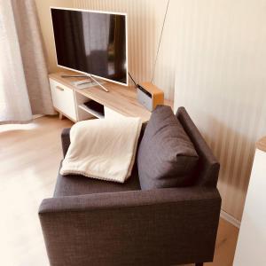 TV/Unterhaltungsangebot in der Unterkunft Ferienhaus Ilfeld
