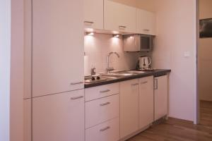A kitchen or kitchenette at Sky Apartments Vienna