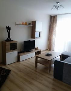 TV/trung tâm giải trí tại Apartaments in Ramygalos str.