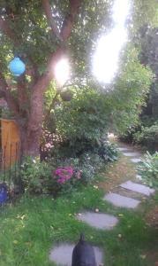 A garden outside Das kleine Ferienhaus