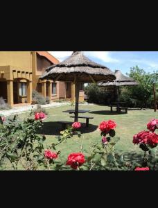 Un jardín fuera de Barranca Del Indio