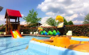 Parco acquatico del residence o nelle vicinanze