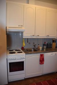 Majoituspaikan Home Ainola keittiö tai keittotila