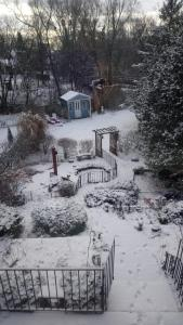 City Garden Oasis during the winter
