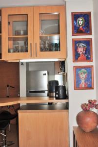 Una cocina o zona de cocina en Studio Apartment En Providencia