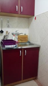 Kuhinja ili čajna kuhinja u objektu Ana-1