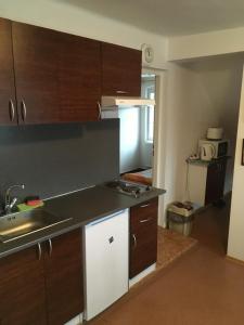 Kuchyň nebo kuchyňský kout v ubytování Apartmány Nikola